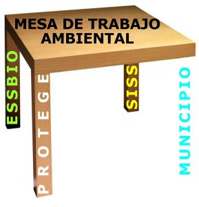 SISS ESSBIO PROTEGE FISCAL 9