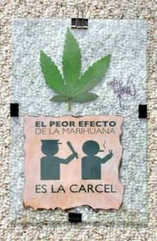 chile65911373a9chile659g