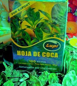 hojas+de+coca