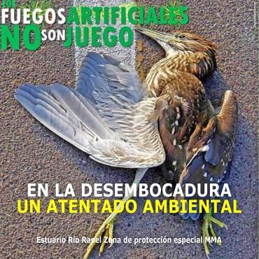 ATENTADO AMBIENTAL